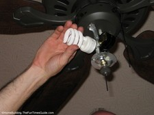 CFL-bulbs.JPG