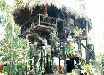 Sipaphays_former_home-a_tree_house.jpg