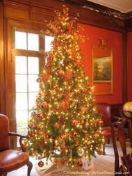 Tate_House_library_Christmas_tree.JPG