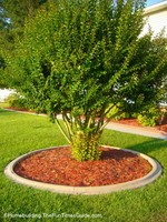 3 Great Reasons To Have Concrete Landscape Curbing Installed