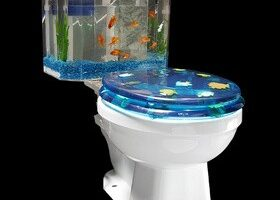 Splish! Splash! An Aquarium Toilet Tank For Your Bath