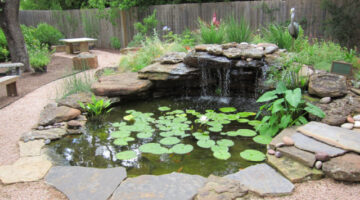 How To Build A Pond: DIY Water Garden Supplies & Costs