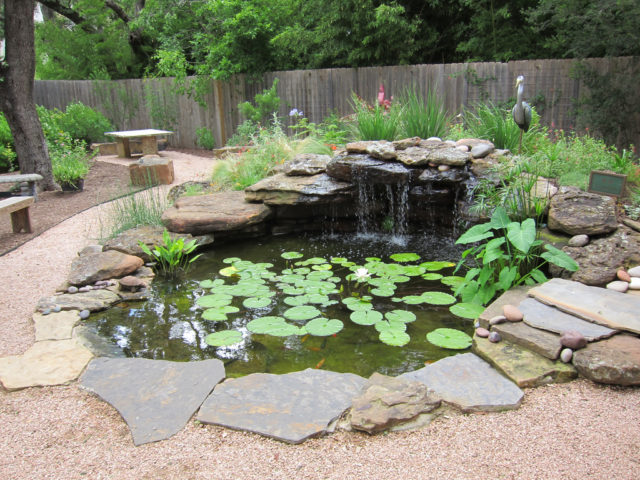 How to build a pond diy water garden supplies costs for Making a water garden