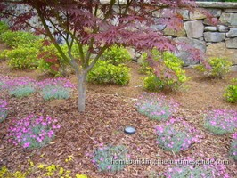Creative Landscape Lighting: A Neighborhood Well Lit: English Cottage-Style Home – Part 8