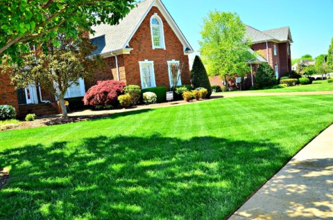 Your lawn could look this nice too with Floratam grass.
