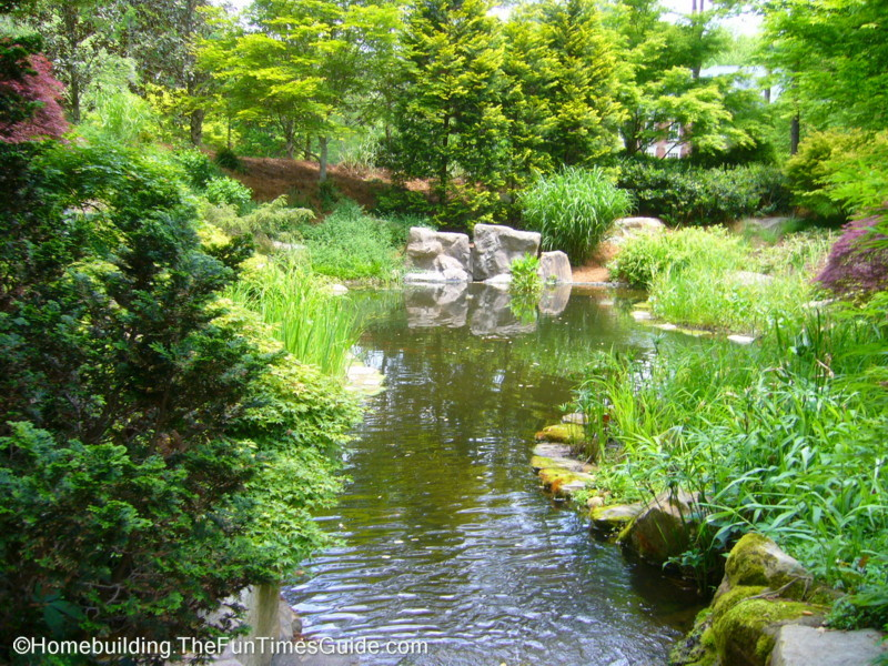 Beautiful pond pictures for Beautiful koi ponds