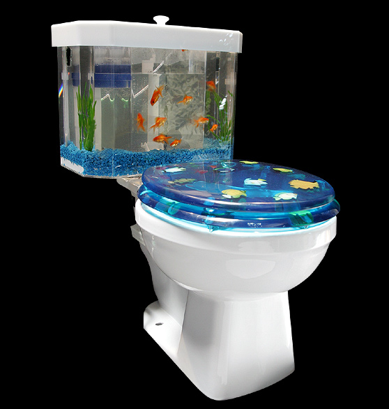 splish splash an aquarium toilet tank for your bath