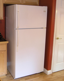 refrigerator-before-liquid-stainless-steel.jpg